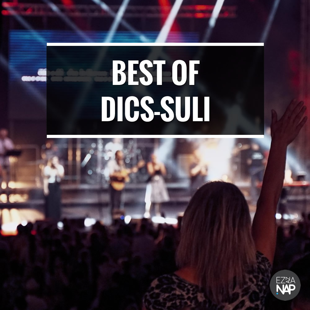 Spotify - Dics-Suli